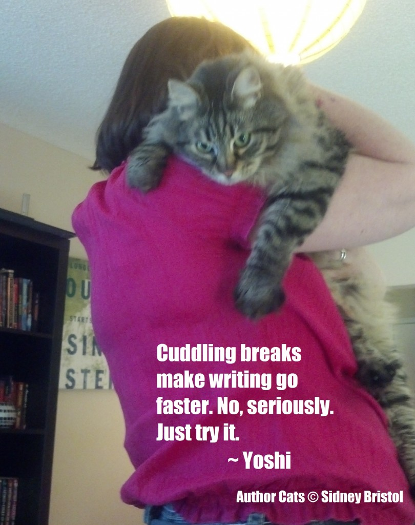 Author Cats #02 Cuddle Breaks